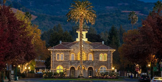 holiday_sonoma_0225-copy.jpg