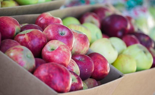 'Grav & Go!' Pop-Up Replaces Canceled Gravenstein Apple Fair