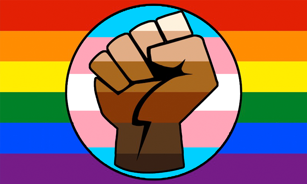 lgbt_gay_trans_pride_blm_fist_flag.png