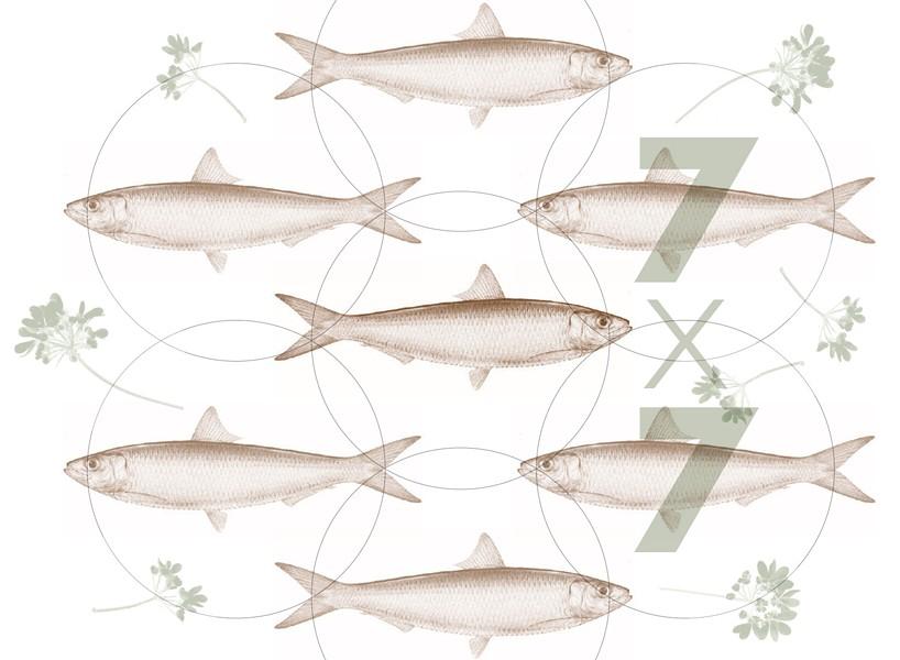 feastof7fish.jpg