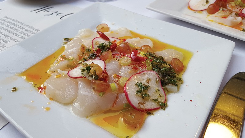 BEJEWELED  Cured scallops with Calabrian chile oil is one of the standouts from the list of starters at Hazel. - STETT HOLBROOK