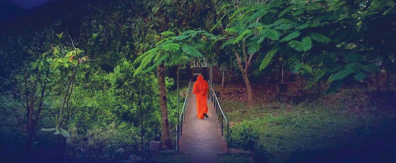 ON THE PATH  New documentary gets full access to a remote hermitage and its guru in the mountains of India.