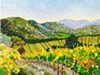 """Mayacamas Hills and Vineyard"" by Dan Scannell"