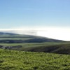 Wilderness and Working Landscapes: Point Reyes