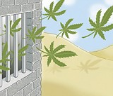 Legalization Realization