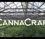 CannaCraft now Red Cross HQ