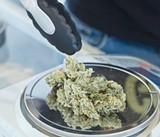 Quid Pro Cannabis