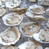 A Palooza, for Oysters