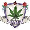 Writers Picks: Cannabis
