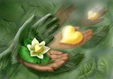 99d42c33_leaf_and_hand.jpg