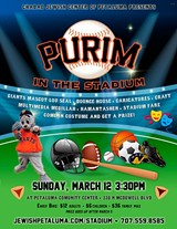 799db4a2_purim-in-stadium.jpg