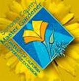 471f9689_scmg_logo.jpg