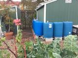 eec4794e_from_gutters_to_garden.jpg