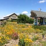 Eco-Friendly Garden Tour - Uploaded by Laguna