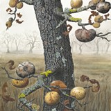 Painting Oak Branches and Galls in Gauach - Uploaded by Laguna