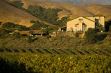 199fb94f_photography_-_gloria_ferrer_winery_sunset_1.jpg