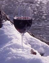 wine_wineland_jpg-magnum.jpg