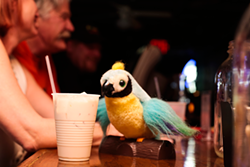 MERT JONES - 67. Have a cheap beer with Homeland's Brody and Carrie — sort of — at T's Fat Parrot.