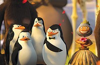 All about the penguins