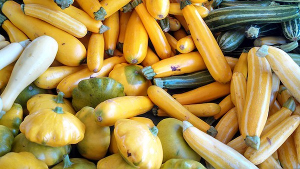 An array of Walnut Ridge Farms squash.