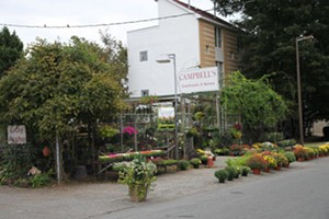 campbellsgreenhouse.jpg