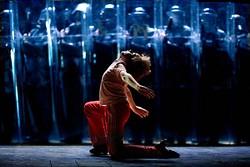 DAVID SCHEINMANN - Billy Elliot