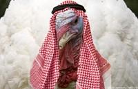 Warning: Beware of Sharia turkeys!