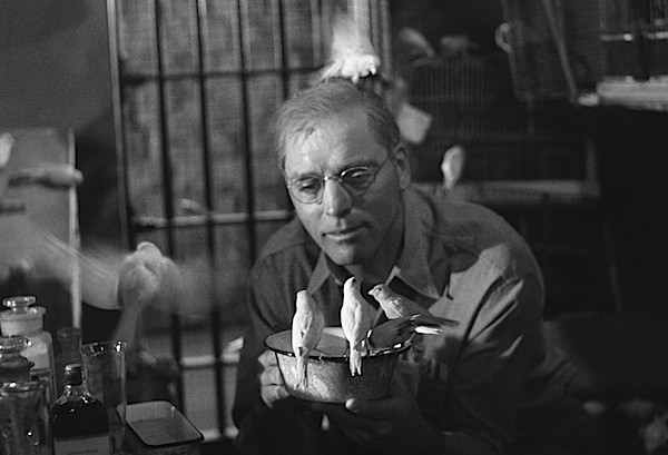 Burt Lancaster in Birdman of Alcatraz (Photo: Twilight Time)