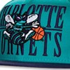 Can 'Hornets' save the Cats?