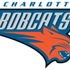 Bobcats or Hornets? The biggest issue of our time