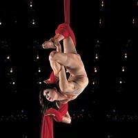 Cirque du Soleil's Quidam is crazy, sexy, cool