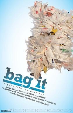 bag_it_poster_jpg-magnum.jpg