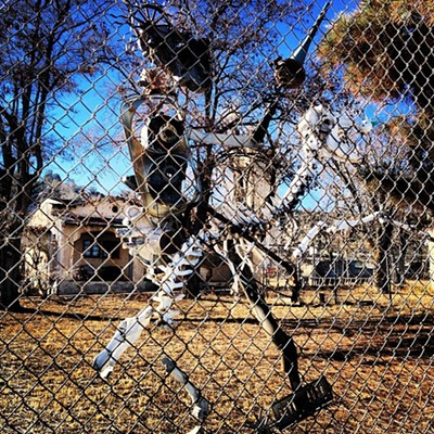 Dem Bones: Quail Lake California Fence