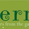 Fern, a new vegetarian restaurant, opens in Plaza Midwood