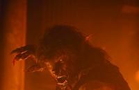 Hairy plodder: <i>The Wolfman</i>