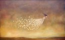 More than eye candy: works from Duy Huynh and Diana Fayt