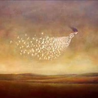 'FREEDOM' by Duy Huynh