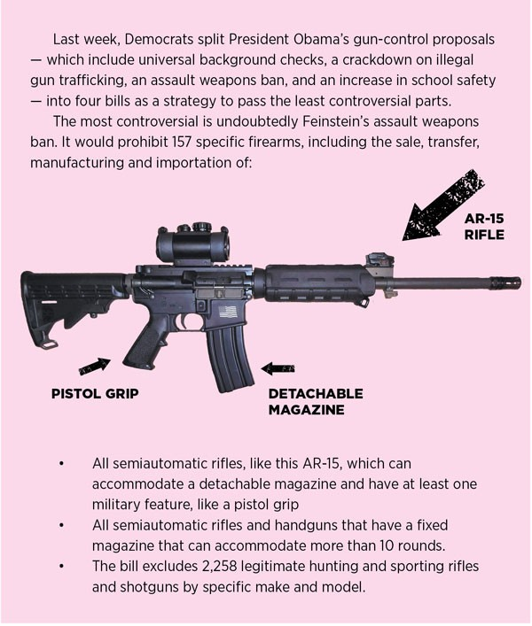 gun-graphic-for-web-site3.jpg