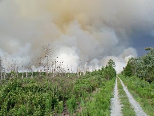 Great Dismal Swamp Fire