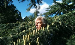 IN BLOOM: Robyn Hitchcock