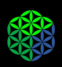 76080244_logo_novabrains.png