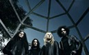 With Alice in Chains, William DuVall finds his audience