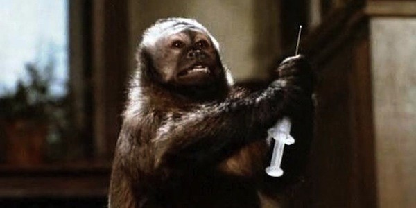 Monkey Shines (Photo: Shout! Factory)
