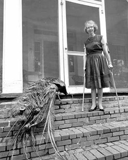JOE MCTYRE / ATLANTA CONSTITUTION - NOM DE PLUMAGE: Flannery O'Connor with one of her trademark peacocks.