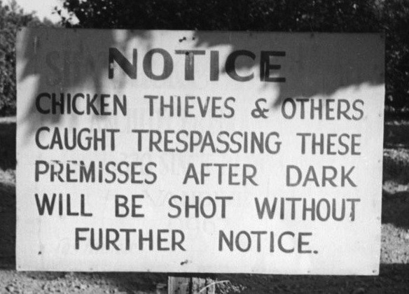 North Davidson residents of the 20s were known to participate in chicken thievery.