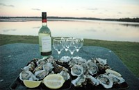 Oyster/Wine Pairing Event at Vin Master