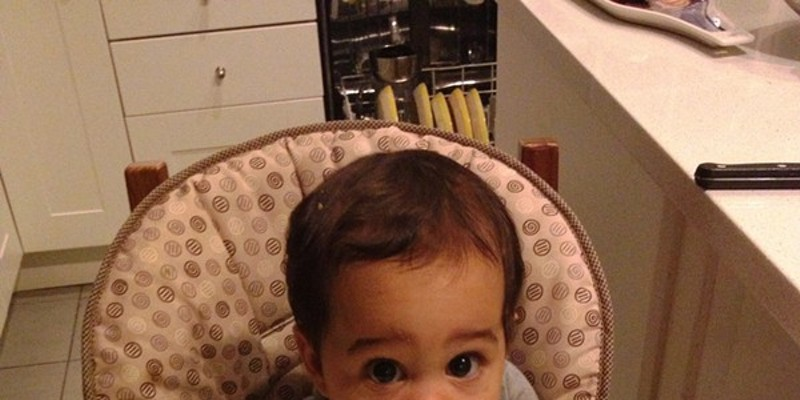 Pau, 8 months old