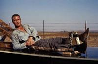 Paul Newman's Peaks