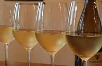 Practice makes perfect: Tasting terroir in wine