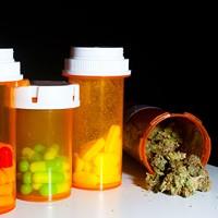 Puff, puff, pass a marijuana-legalization bill